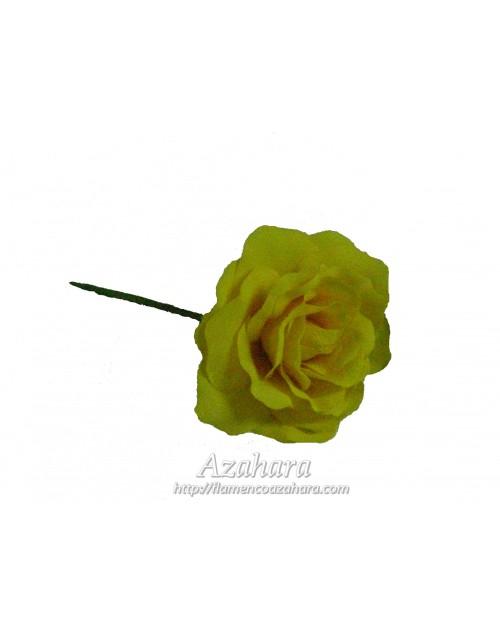 Flor Niña